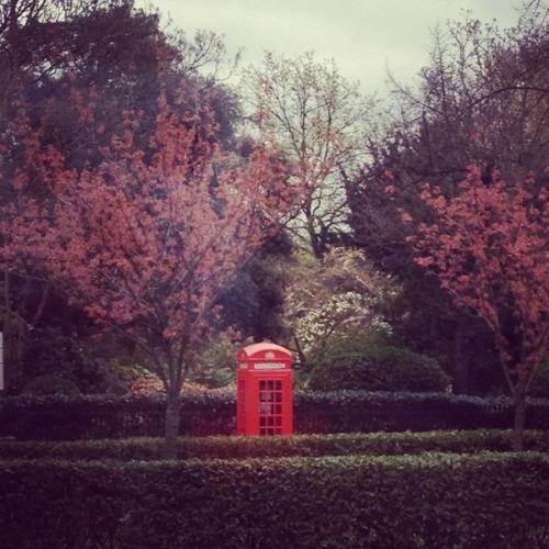 Лондон. Туры в Великобританию